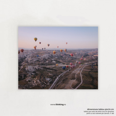 hot air ballons in the sky landscape