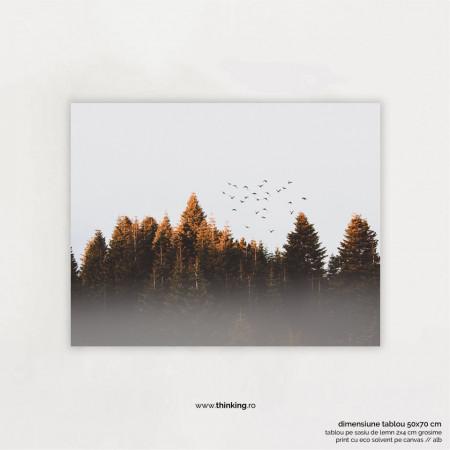 flock of birds landscape