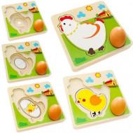 Puzzle educativ Multistrat Gaina si Oul. Ciclul Vietii. Puzzle Montessori.