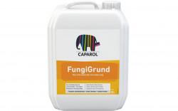 FungiGrund