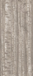Faianta Boost Pro Grove, Decor, rectificata, Atlas Concorde, 120x279